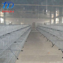 Professional plastic chicken transfer cage with CE certificate