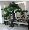 /product-gs/new-product-for-2015-artificial-pine-tree-customized-tree-h2-5m-for-indoor-decoration-60262632422.html
