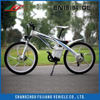 FJTDE01 eagle electric bike,import electric bike from china