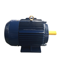 Hydraulic systems electric motor