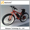 48v 11.6ah 1000w 100km rear motor land rover electric bike