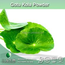 high quality gotu kola extract,gotu kola P.E,20%~90% asiaticoside