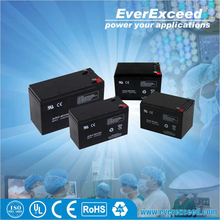 EverExceed rechargeable dry battery 12v for ups