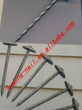 Selling common umbrella head roofing nails