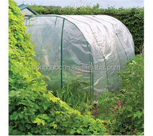 polytunn garden grow house