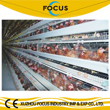 Focus industry group one stop purchasing farm equipment for chicken farm use chicken incubation and raising