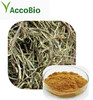 Hot sale High quality White Willow Bark Extract,Natural White Willow Bark Extract powder/Salicin 10% 98%