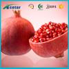 Top quality 40% ellagic acid 70%Polypheol Pomegranate extract