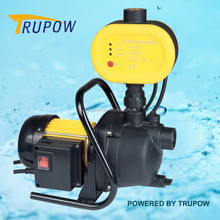 100w Electric Switch Garden Water Pump TP03055