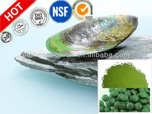 Factory wholesale green lipped mussel extract powder