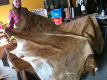 Cow Hide , Buffalo hide, donkey hide, wet blue
