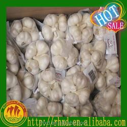 New 2015 Chinese Natural Fresh Garlic Price