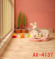 Hot Sale Photo Studio Baby Digital Photography Backgrounds Photo Props Baby Photo Backdrops