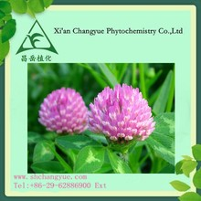 manufacture supply high quality red clover extract / total isoflavones powder