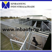 Low price large dog cage dog kennel cages made in china