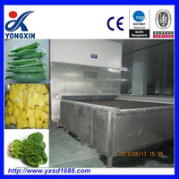 High quality freezer fruit and vegetable Industrial ammonia freezer