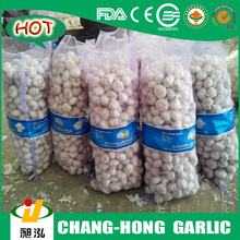 [HOT] Pizhou Garlic
