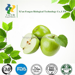 ISO Certificate factory supply 100% Natural apple extract & natural apple tea