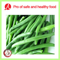 High Quality IQF Green Beans for sale