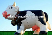 inflatable cow/giant inflatable cow