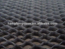 2015 hot !!! Grass Seed Mats 50mm--200mm Cell Depth HDPE Smooth Plastic Geocell