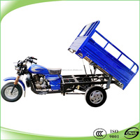 Best cheap adult cargo tricycle for sale