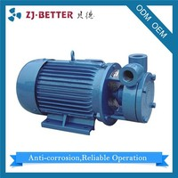 Promotional Prices 1W High Pressure Fog Machine Electric Pump