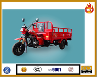 China brand 200 cc 250cc heavy load cargo tricycle