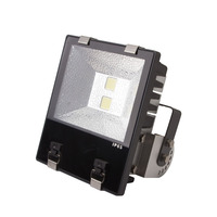 Meanwell driver die cast aluminum 100w ip65 outdoor led flood light