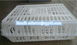 Best selling chicken/broiler plastic transport crate/cage/box directly from factory