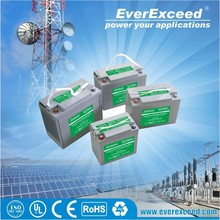EverExceed Gellyte 24v sealed lead acid battery