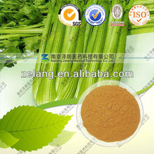 High Quality Wild Celery Herb Extract for high blood pressure