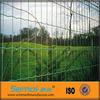PVC Coated Holland Wire Mesh/Dog Ear Fence Made In China