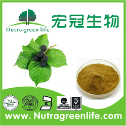 Factory Supply 100% Natural 2% Mulberry Leaf Extract Deoxynojirimycin Herbal Extract