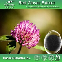 100% Natural Red Clover Extract/Red Clover Extract for Antibiotic