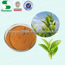 Organic Green Tea extract (Tea Polyphenol 25%-98% )with free samples & highest quality & competitive price