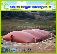 Contemporary hot sale gas-specific biogas storage tank