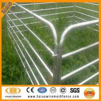 Australia market hot sale cattle rail fence