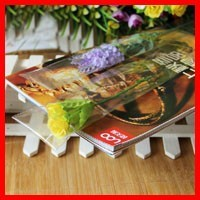 High Quality 6cm*35cm*50micron Clear Gift Flower Packaging Bag Candy Adhesive Bag Plastic Sealed