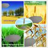 fertilizer production urea