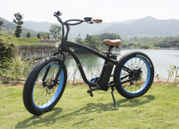 two-wheeled hot choppers bikes electric motorcycle for adults
