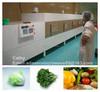 Belt conveyor fruit/vegetable dehydration machine/drying equipment