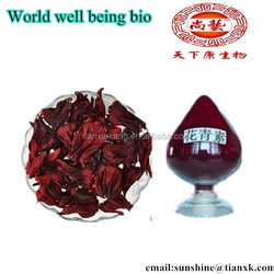 Dried Hibiscus Powder Pigment /Hibiscus Flowers Extract Anthocyanins / Organic Hibiscus Flowers Powder