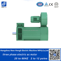 NHL wholesale price electrical induction 230v ac motor