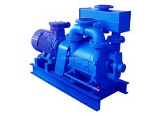 2BE single stage wateror liquid ring vacuum pump