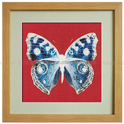 new desigh attractive framed pictures for decoration