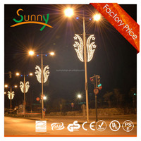 STREET DECORATION LED HOLIDAY LIGHT LED CHRISTMAS LGHT 220V 50W/100W LED MOTIF light with CE ROHS SGS
