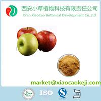 High Quality Natural Green Apple Slimming Dietary Fiber Powder