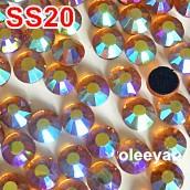 DSCN3452