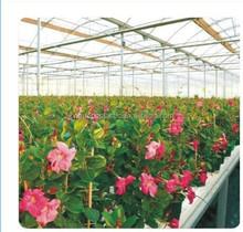 Use winter garden flower greenhouse tunnel film